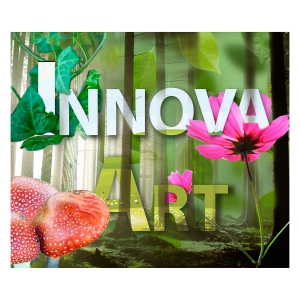 Innnova Art Environmental
